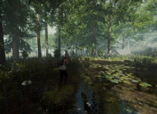 the forest gameplay